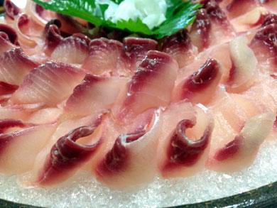 ryusensou-鯉のあらい2