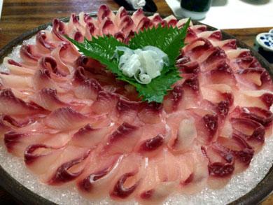 ryusensou-鯉のあらい